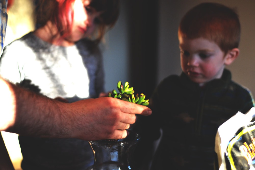 Daddy explaining the different plants | March 2016 | All Rights Reserved: Heather Woolery 2016