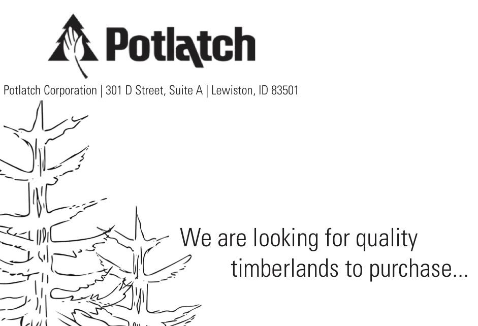 Potlatch Corp_Envelopes_twotrees copy.jpg