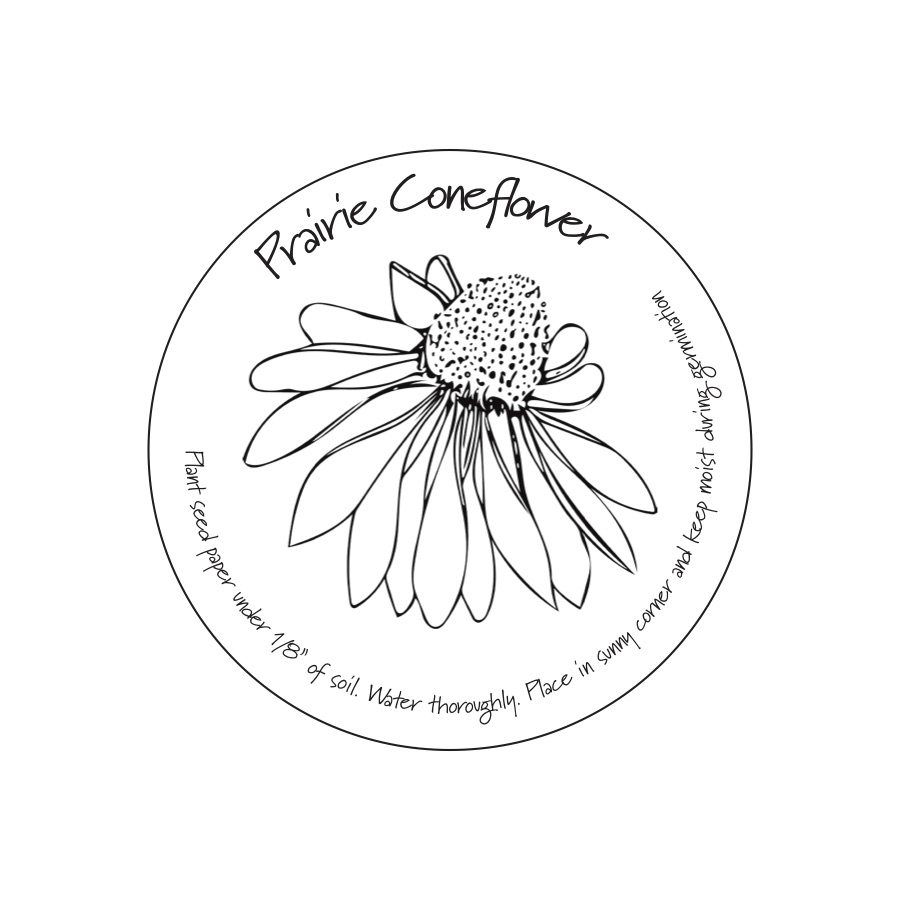 ConeFlower_Coaster copy.jpg