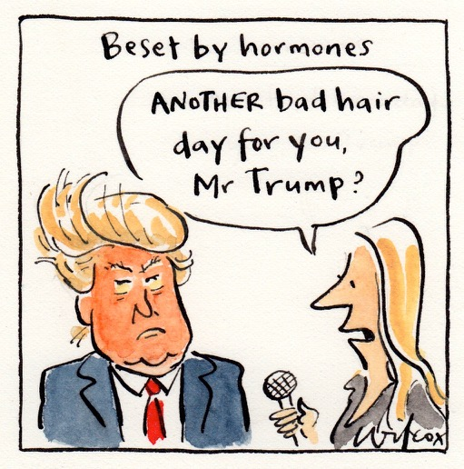 Trump S Bad Hair Days Cathy Wilcox