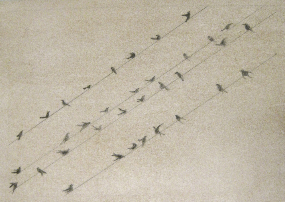 Christian Bradley West Birds on a Wire, 2011.jpg
