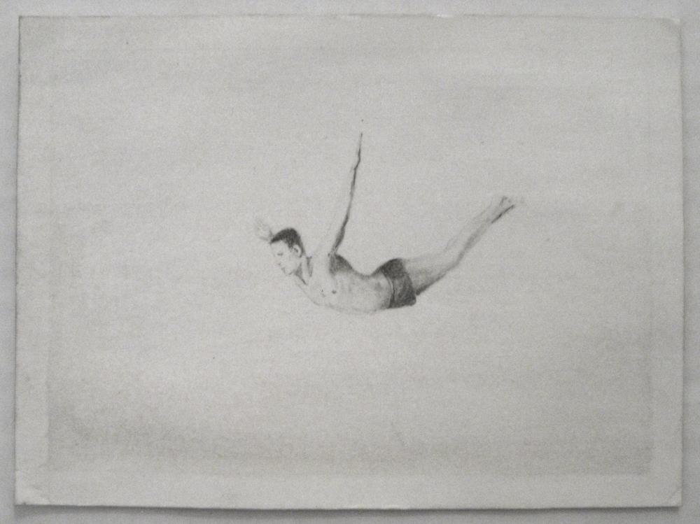 Christian Bradley West Solitary Diver,2010.jpg