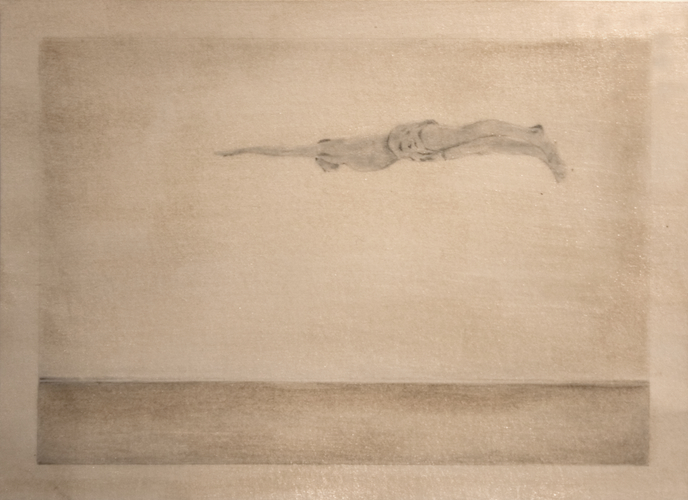 Christian Bradley West Diver On Horizon, 2010.jpg
