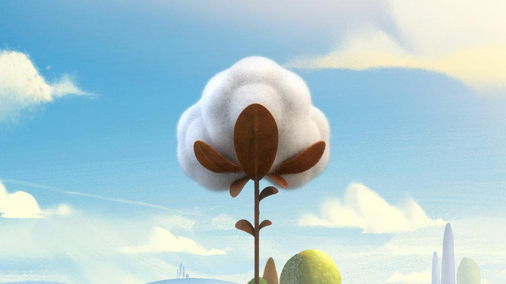 Cotton Fundamentals