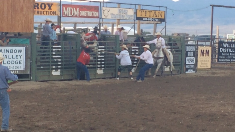The cowhands get ready to start the action.