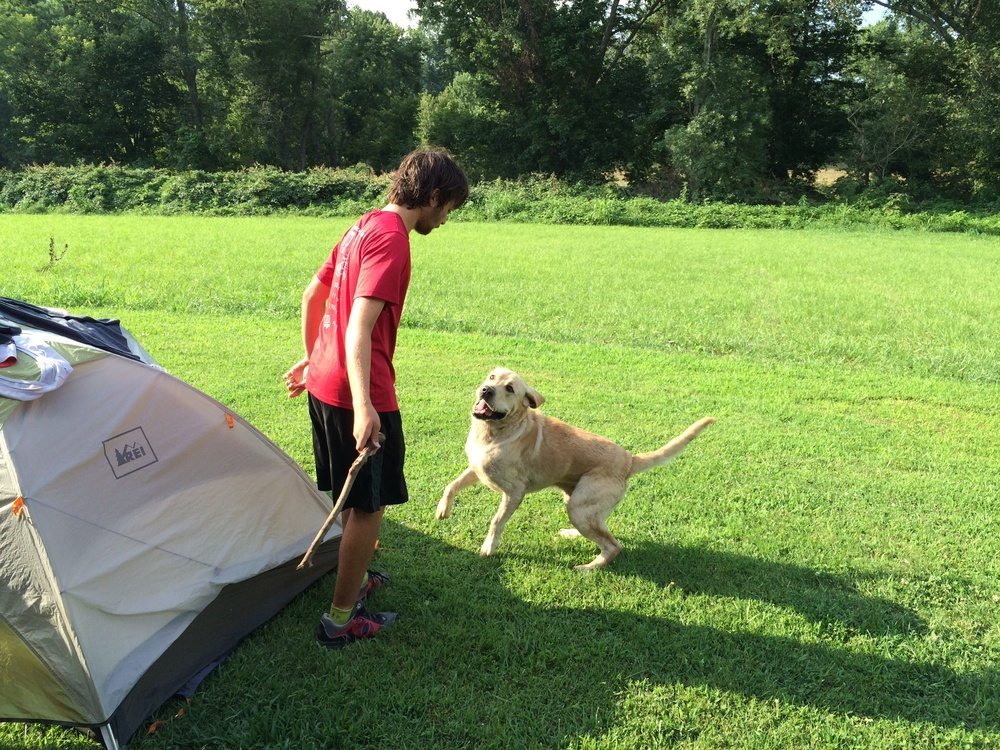 This lab joined us in camp. The boys named him Meth. Get it?
