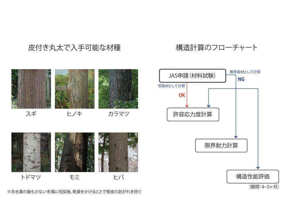 11_Wood.jpg