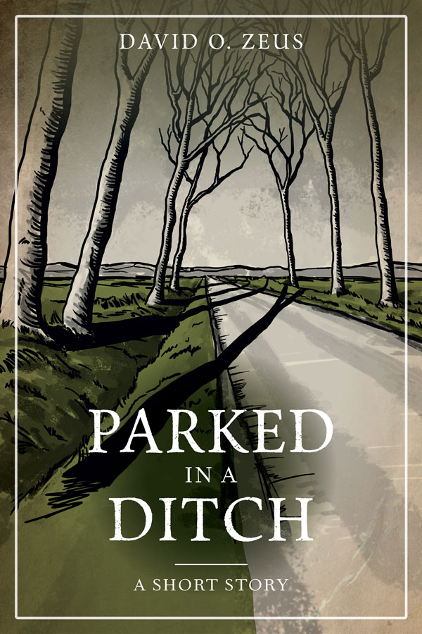ParkedinaDitch_FINAL-COVER_IllustratedVersion_web.jpg