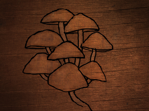 mushroom_tops_drawing.jpg