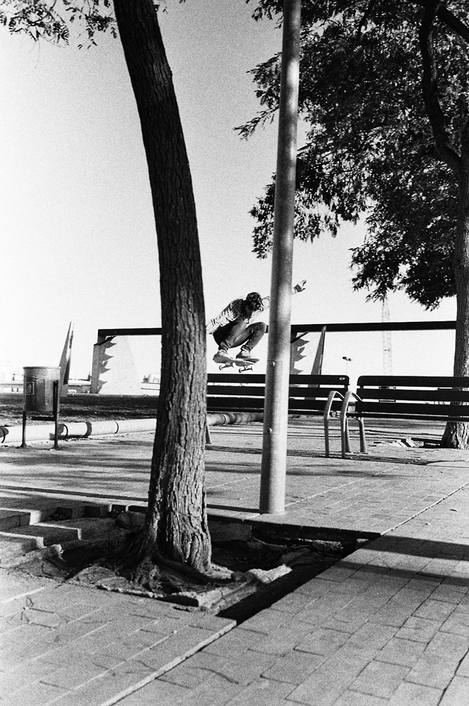 Ollie - Picture by Ramon Zuliani