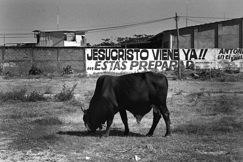 """Wall sign: """"Jesu Cristo Viene Ya!! ...Estàs Preparado!"""" (Chiapas),December 2012"""