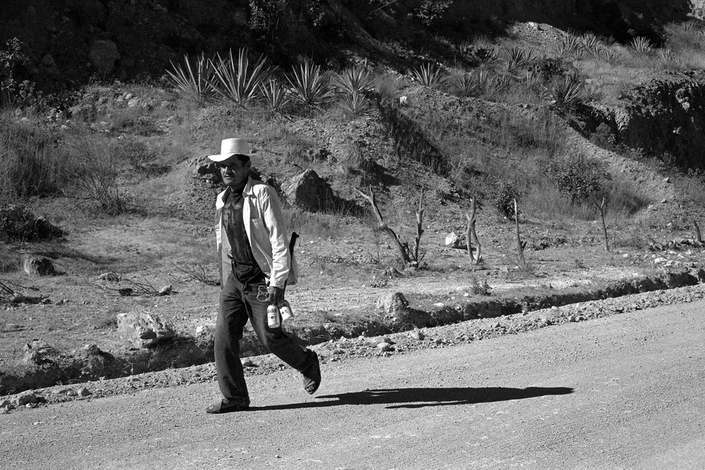 Agave field worker (Southern Mexico), December 2012