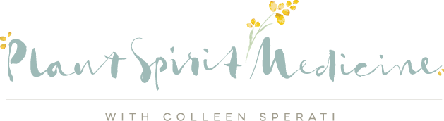 Plant Spirit Medicine with Colleen Sperati