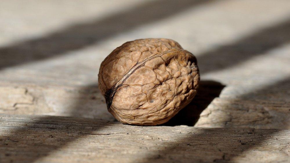 walnut-nut-fruit-bowl-healthy-38292.jpeg