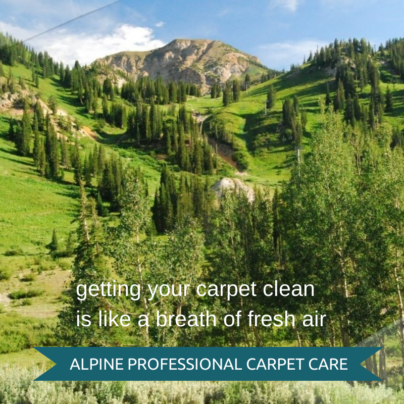 carpet cleaning near cedar hills utah