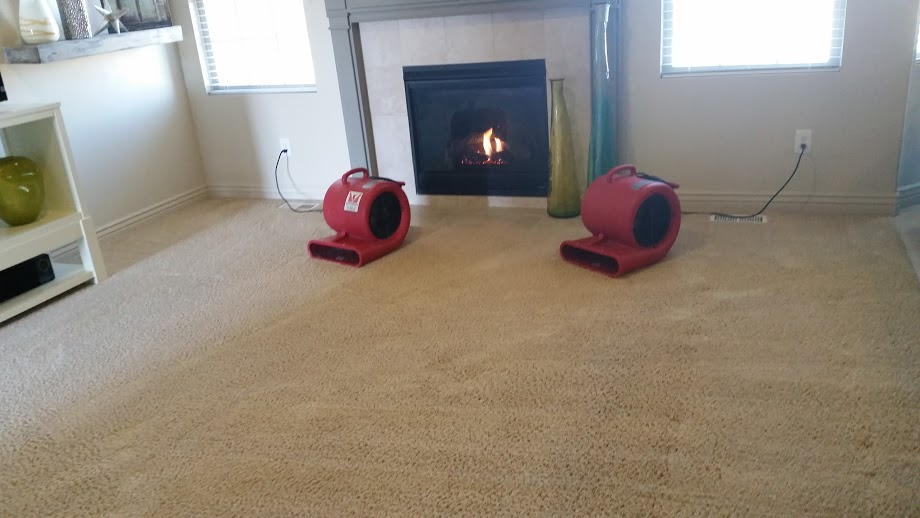 carpet cleaning fans in Utah County.jpg