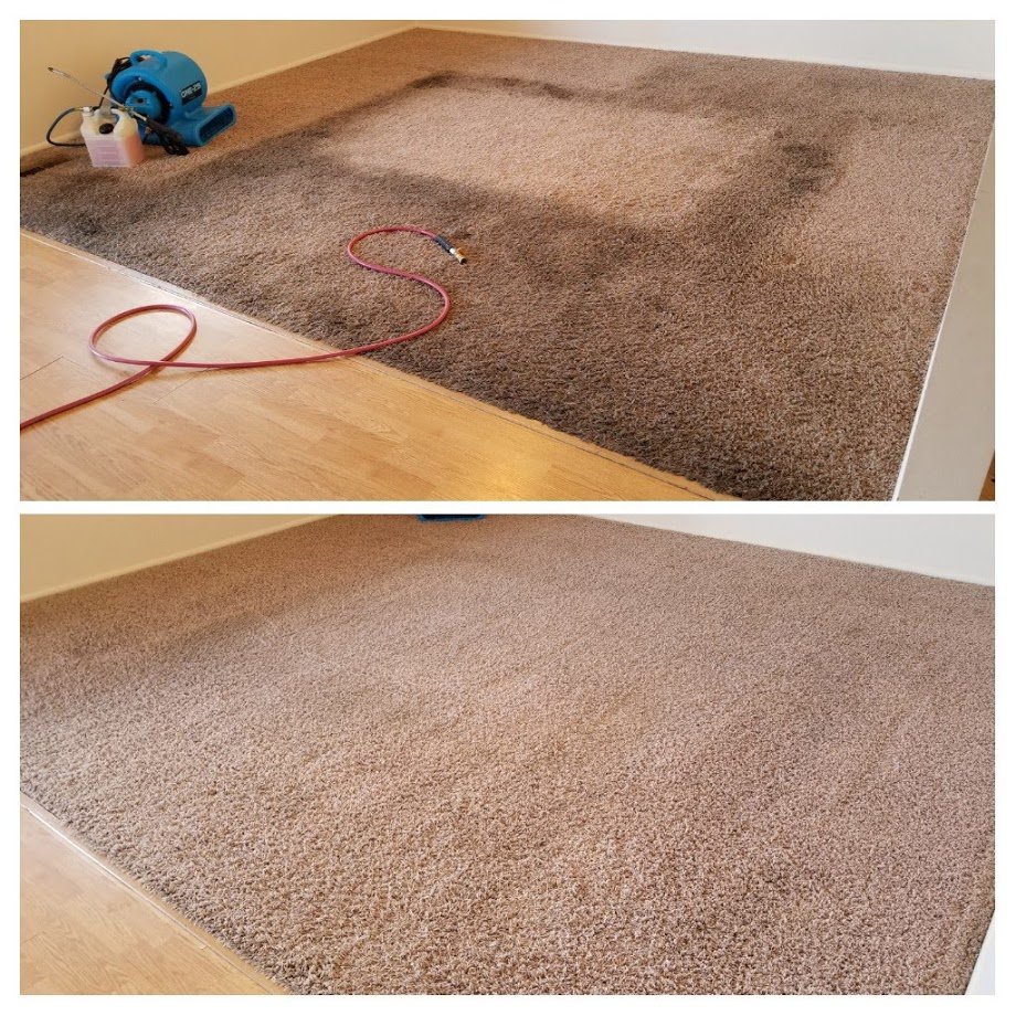 carpet cleaning in Lehi Utah, making a difference.jpg