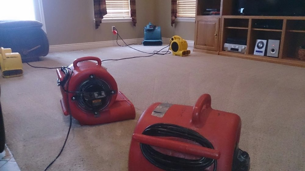 carpet cleaning airnovers.jpg