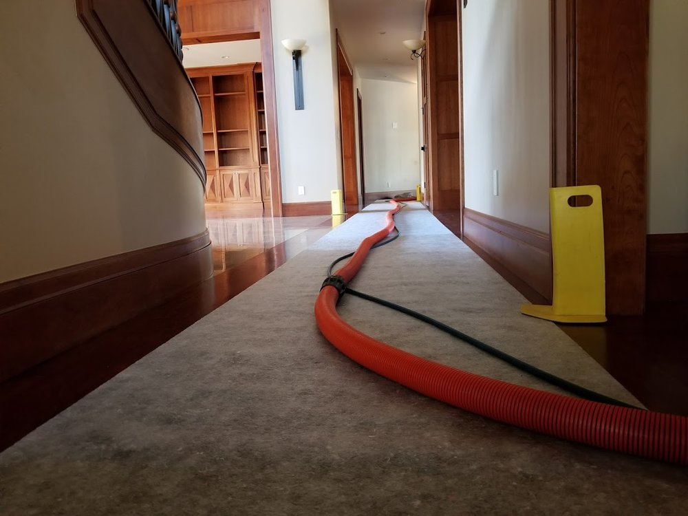 carpet cleaning service in Orem Utah.jpg