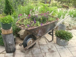 Wheelbarrel Planter