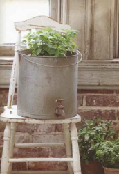 Galvanized Pail for Planter