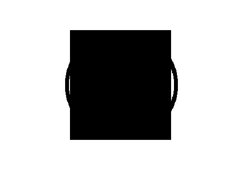 Levo-Logo.png