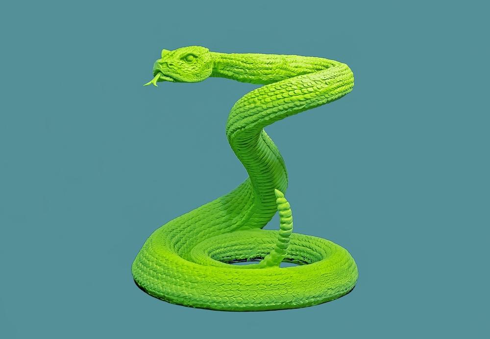 SnakePost1.jpg