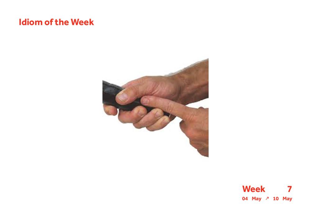 Week 7 Idiom24.jpg