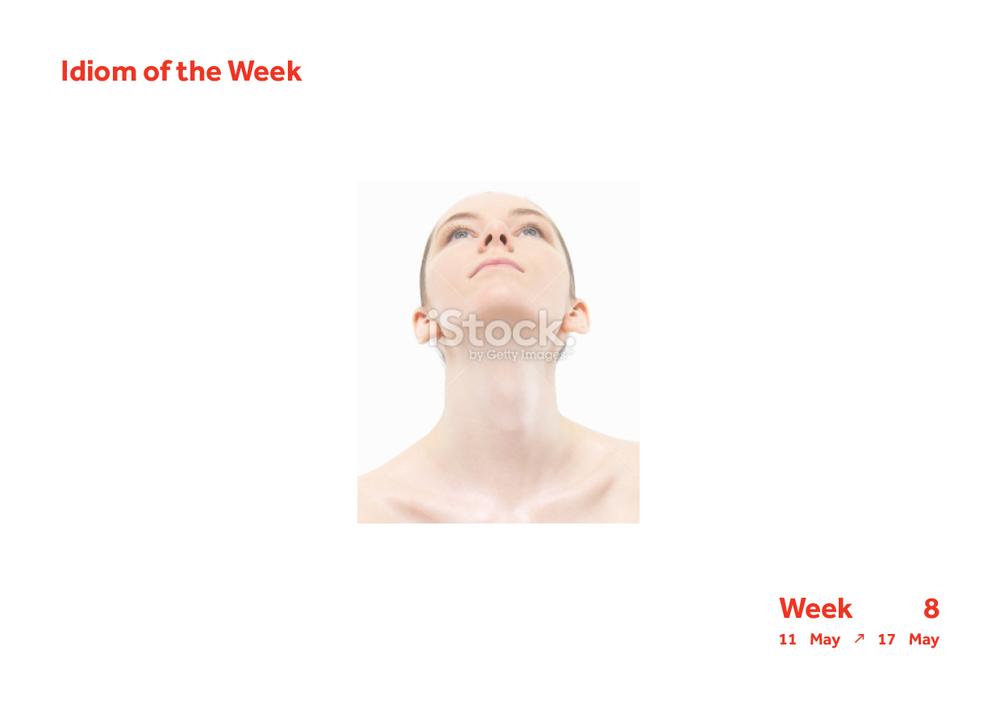 Week 8 Idiom4.jpg