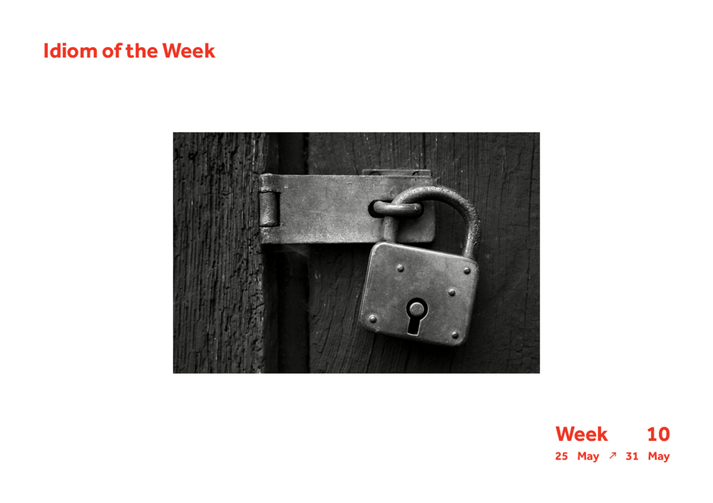 Week 10 Idiom8.jpg