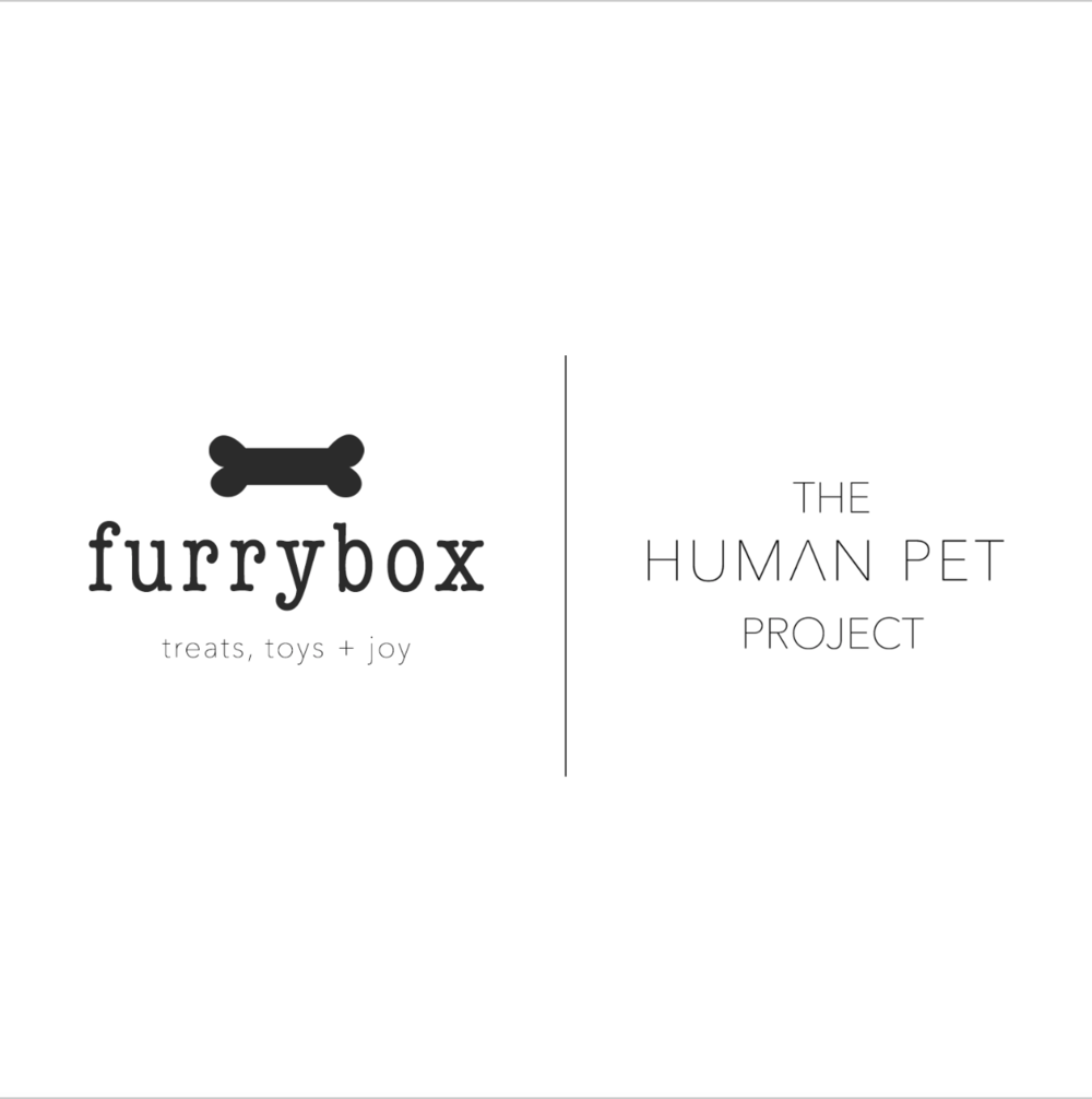 Zandríc Creative Projects x The Human Pet Project - Branding in NYC