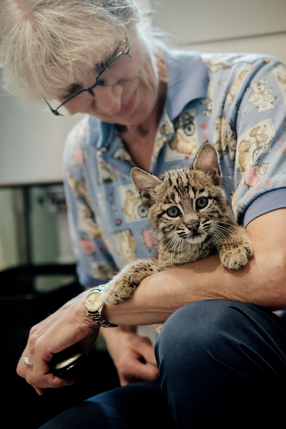 Dr Gia Morgan with Orphaned Bobcat