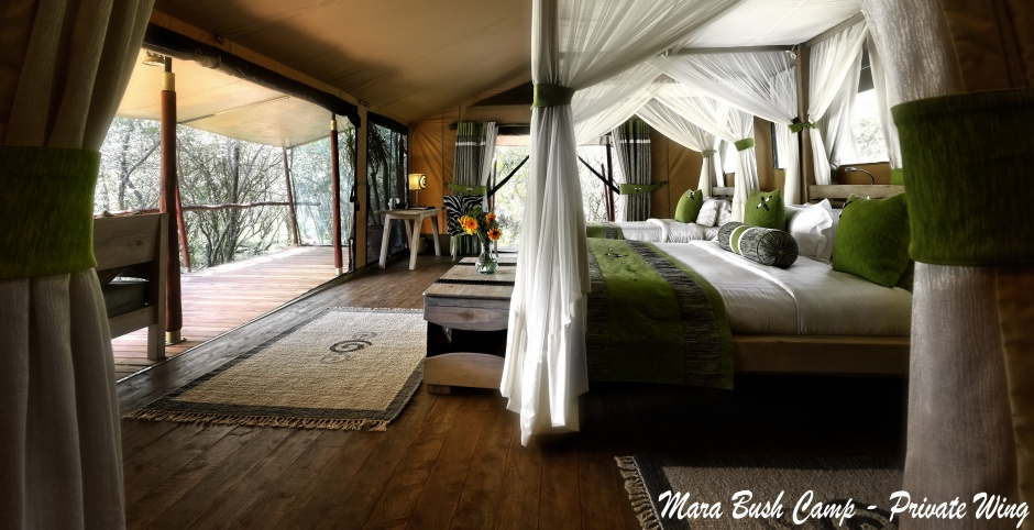 MBC-phoca_thumb_l_forest_tent_interior.jpg