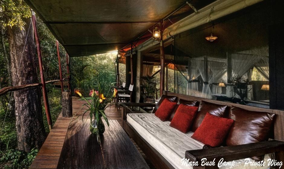 MBC-phoca_thumb_l_forest_tent_veranda.jpg