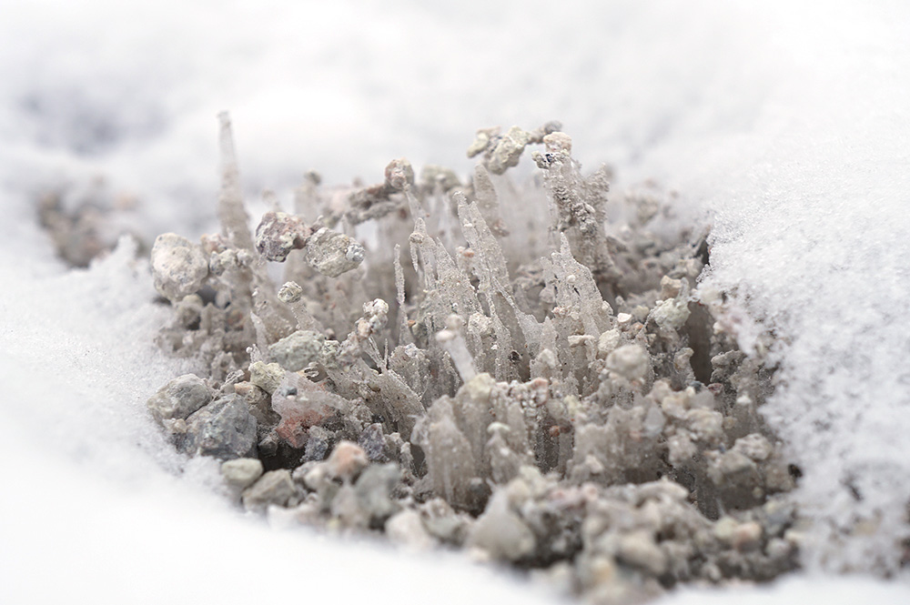 needle_ice.jpg