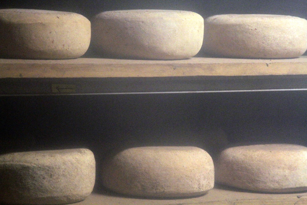 Cheese aging in Valley Shepherd's cheese cave. Take the tour and you'll see this too!