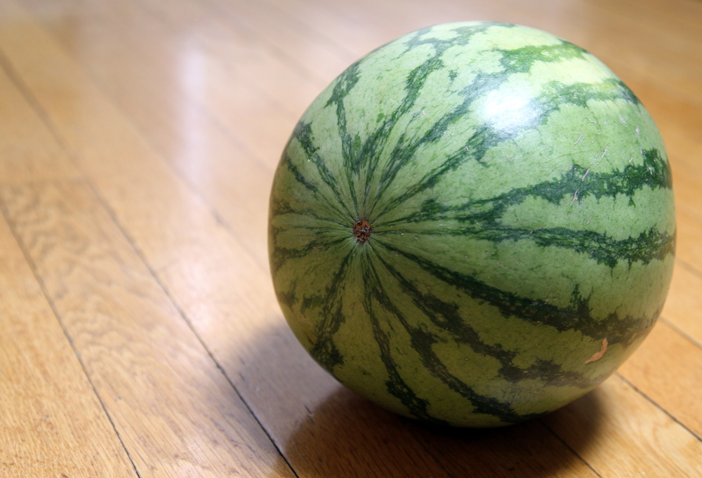 Seedless watermelon (I didn't grow)