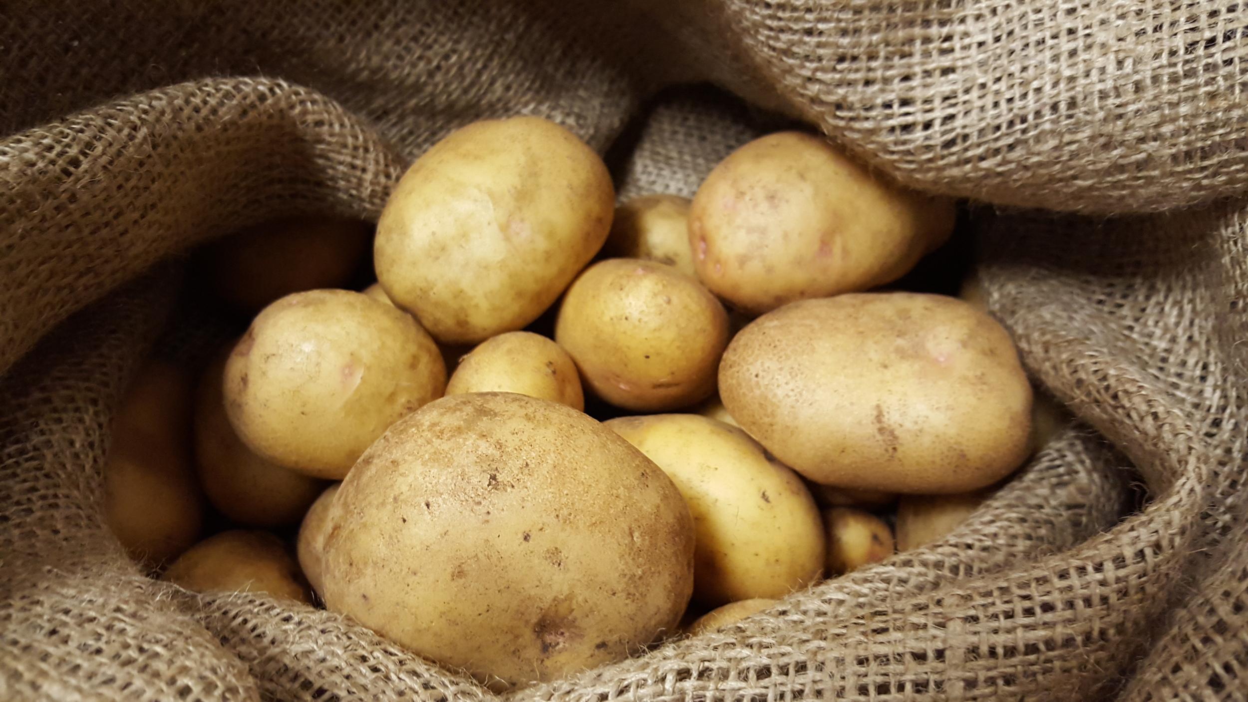 How to Store Potatoes — The Wine Box Gardener