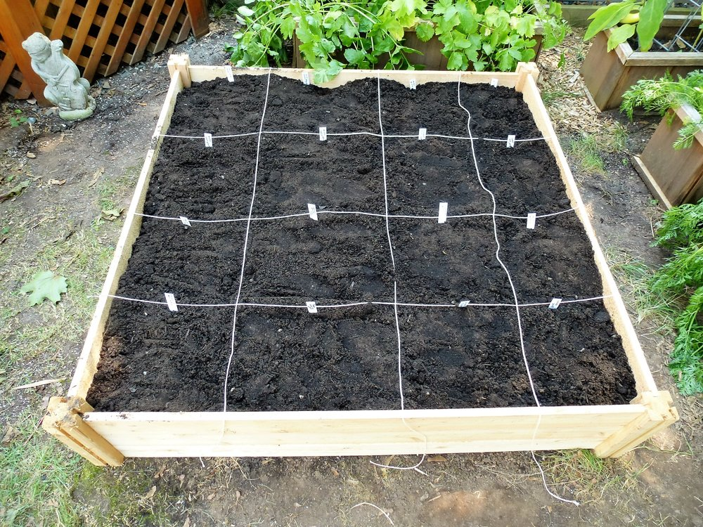 Step 5: Plan and plant. I use the Square Foot Gardening spacing, which tells me how many plants of each type will fit in a square foot space, but I don't follow the entire Square Foot Gardening method.