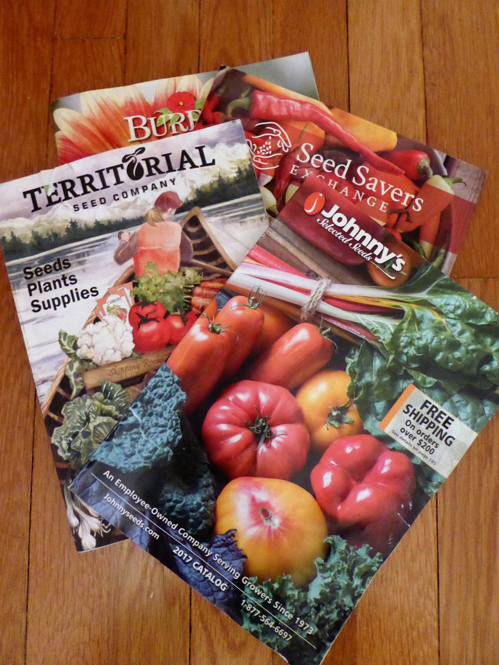 2017 seed catalogs
