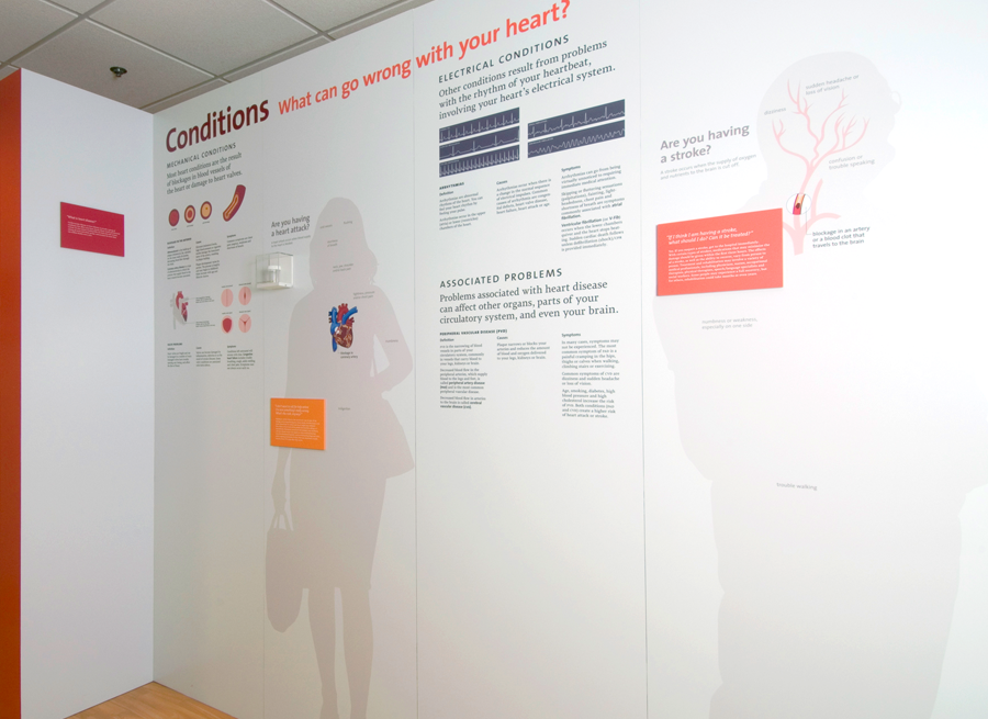 Life size silhouettes were created as a easy way to layer information and attach actual devices to.