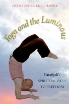 Yoga and the Luminous by Christopher Key Chapple