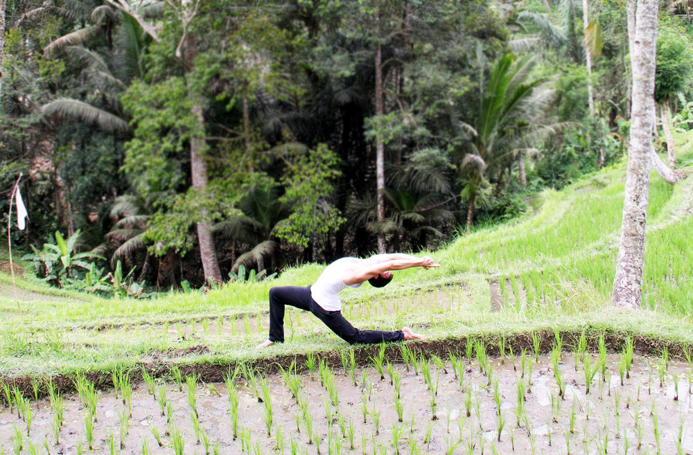 Kapilyasana 2 - Rice Fields.jpg