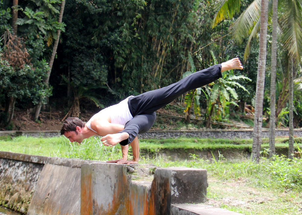 Twisting Koundinyasana - Jungle - CU.jpg
