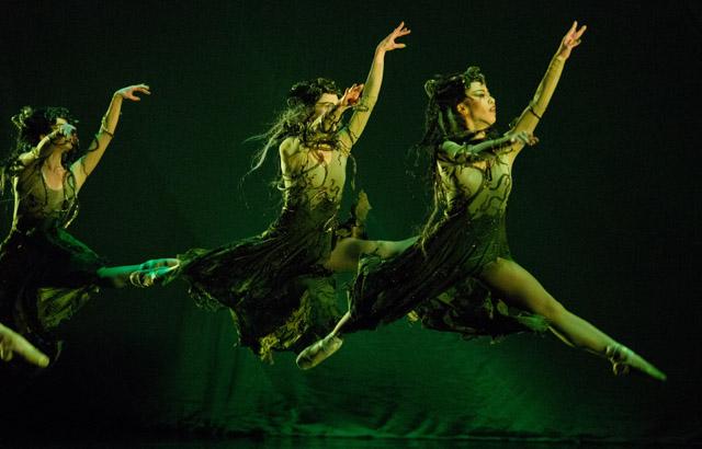 Alberta Ballet female ensemble