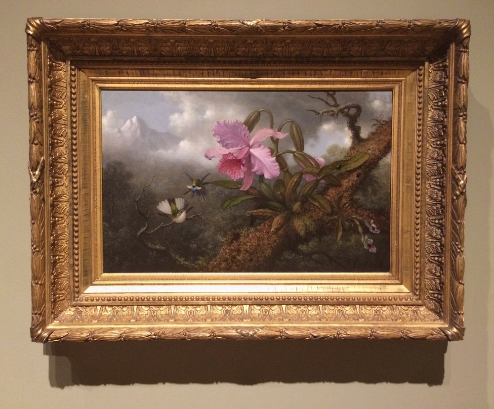 Martin Johnson Heade,  Two Hummingbirds with an Orchid , 1875.