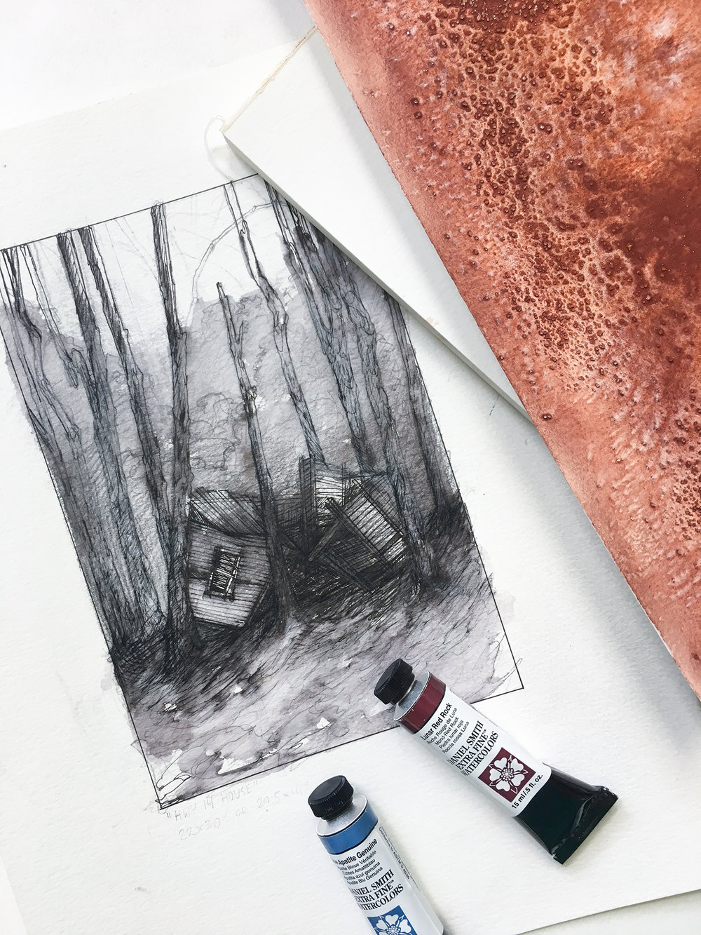 Ink washes are great because they help you see value shifts and identify the light source, especially if you are working from multiple images like I do.