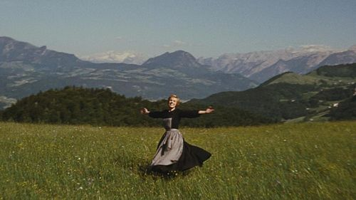 What the Naturespace people probably see everyday. Still from The Sound of Music. All rights reserved to 20th Century Fox. Please don't sue me. ¯\_(ツ)_/¯