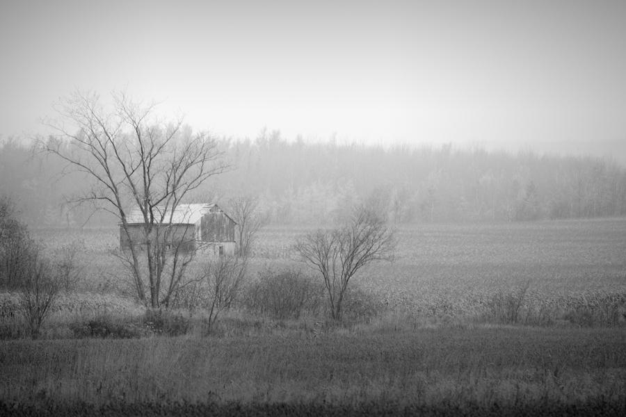 barn in rain
