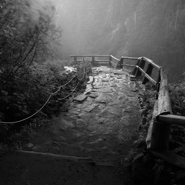 a beaten path